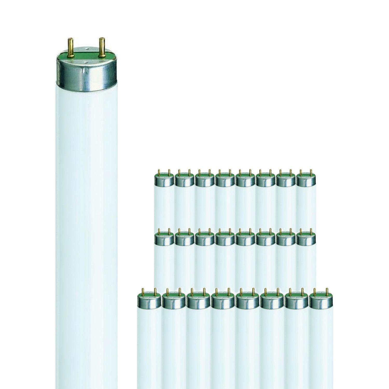 Mehrfachpackung 25x Philips TL-D 58W 865 Super 80 (MASTER) | 150cm - Tageslichtweiß