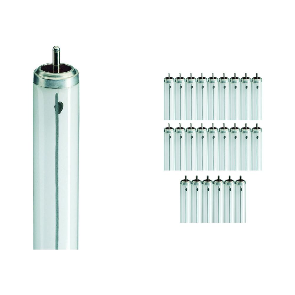 Mehrfachpackung 25x Philips TL-X XL 40W 33-640 - 118cm