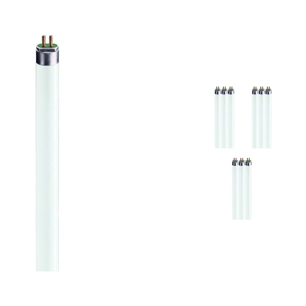Mehrfachpackung 10x Philips TL5 HE 14W 865 (MASTER)   55cm -