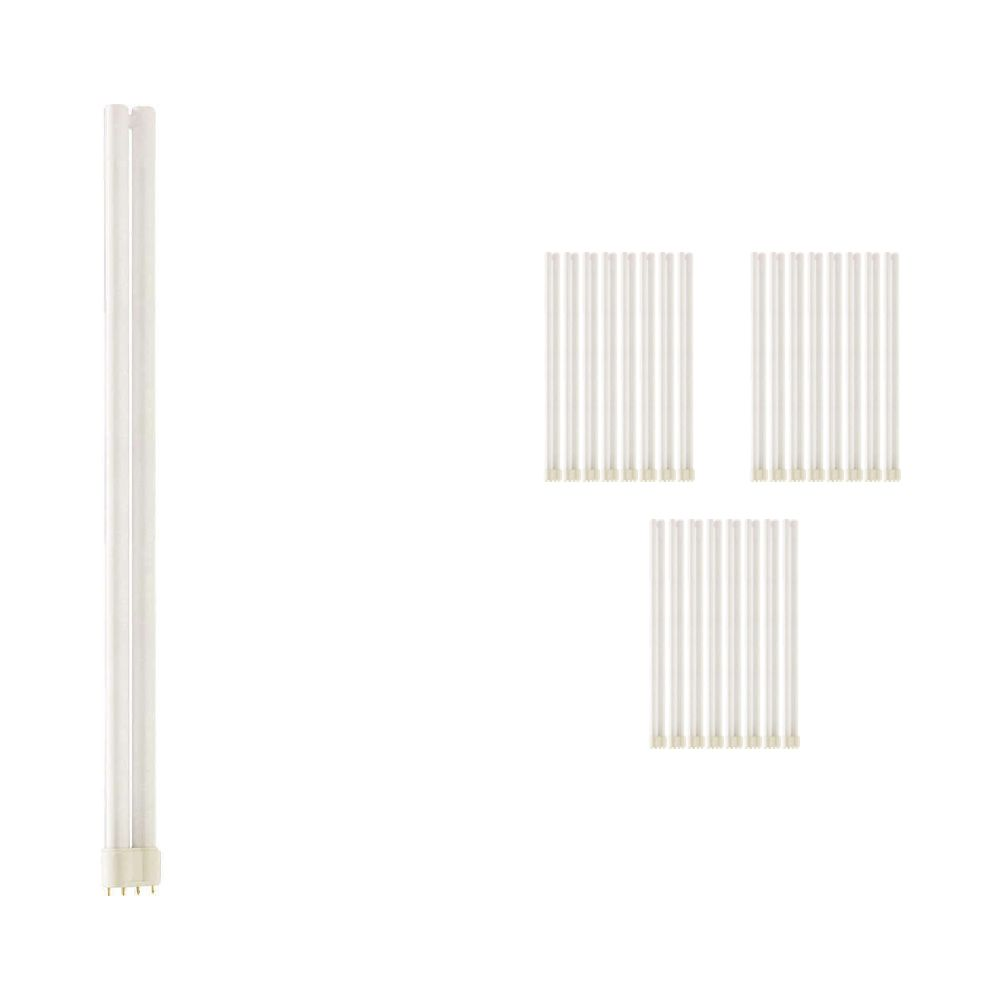 Mehrfachpackung 25x Philips PL-L 55W 840 4P (MASTER) | 4-Pins