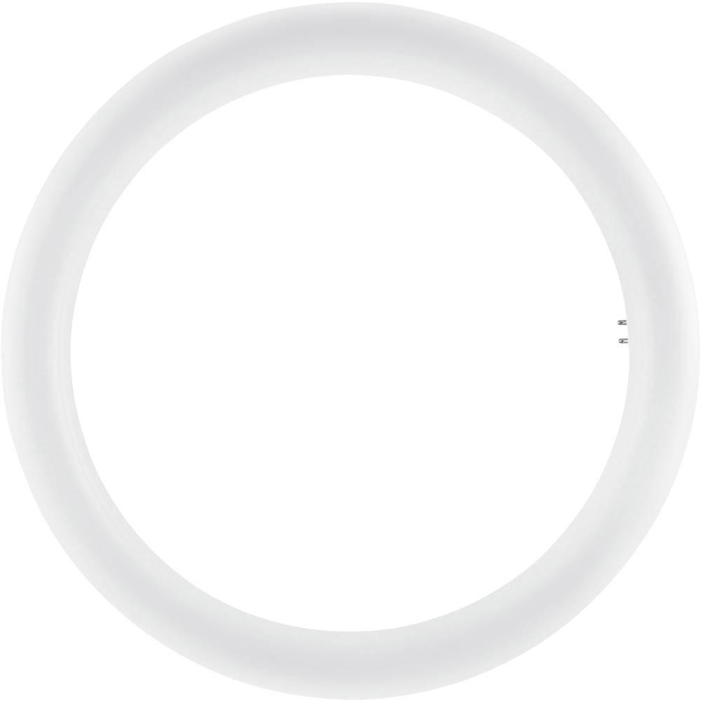 Osram SubstiTUBE T9 Circular EM MAINS G10Q 20W 840   2000 Lumen - Ersatz für 32W